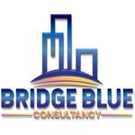 BRIDGE BLUE CONSULTANCY SRL