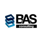 BUSINESS ANALYSIS & STRATEGY CONSULTING SRL