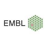 European Molecular Biology Laboratory (EMBL)