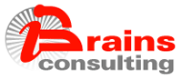 BRAINS CONSULTING SRL