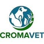 Croma Impex SRL