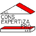 Cons Expertiza Pro