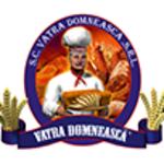 SC VATRA DOMNEASCA SRL