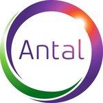 S.C. INCRESSA SERVICES SRL, parte din ANTAL INTERNATIONAL NETWORK Ltd