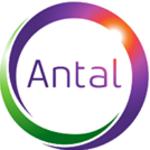 Antal International Iasi