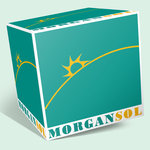 Morgan Sol pentru FORCE 1 - DIVIZIA DE SECURITATE