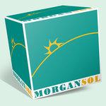 Morgan Sol pentru CARPET & MORE